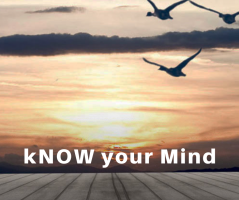 kNOW your Mind Blog Series